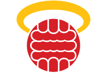Southampton – new logo